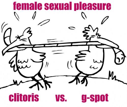 clitorisvsgspot