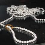 pearl-restraints